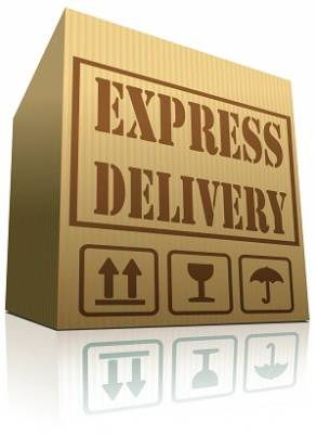 b2ap3_thumbnail_Speedy-Shipment-Image-3.jpg